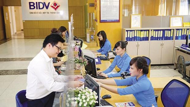 Les societes vietnamiennes distinguees par Asiamoney hinh anh 1