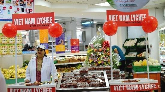 Les EAU, 7e partenaire en commerce du Vietnam hinh anh 1