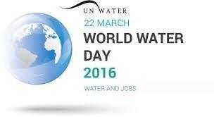 Celebrations de la Journee mondiale de l'eau 2016 hinh anh 1