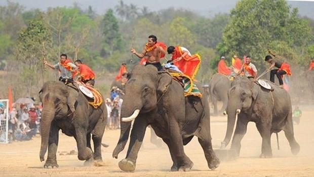 Bientot la Fete des elephants de Buon Don 2016 hinh anh 1