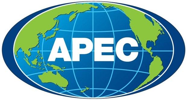Lancement d'un concours de design du logo de l'APEC 2017 hinh anh 1