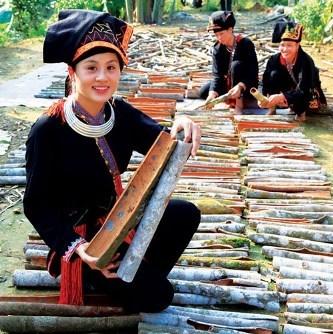 Nouvelle ruralite : le cannelier, «l'arbre de vie» des Dao de Yen Bai hinh anh 4