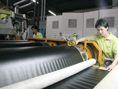 Plasturgie : Rang Dong developpe ses exportations au Japon hinh anh 1