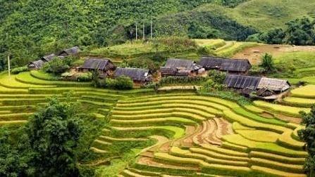 Lao Cai: De nombreux resultats pour le programme 135 hinh anh 1