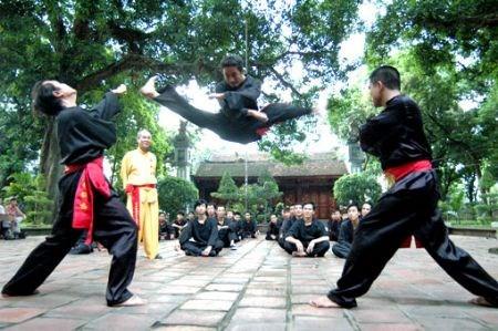 En juillet pour les 1ers Championnats du monde d'arts martiaux traditionnels du Vietnam hinh anh 1