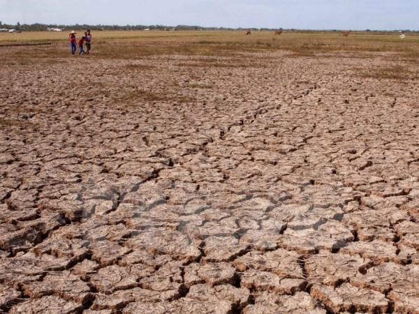 MRC: la secheresse et la salinisation perdurent dans le delta du Mekong hinh anh 1
