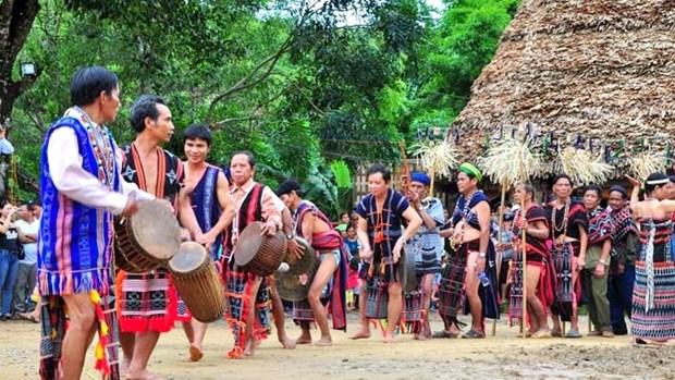 Bientot la Journee culturelle de l'ethnie Co Tu a Da Nang hinh anh 1