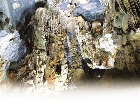 Phong Nha-Ke Bang, au royaume des grottes hinh anh 2