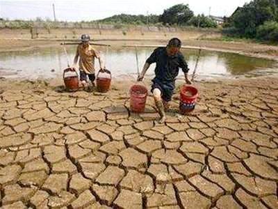 Le delta du Mekong cherche a s'adapter a la salinisation et a la secheresse hinh anh 2