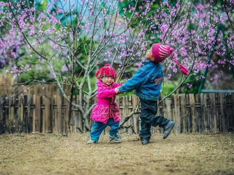 L'«histoire de la paix» racontee au Japon hinh anh 1