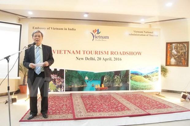 Promotion du tourisme du Vietnam en Inde hinh anh 1
