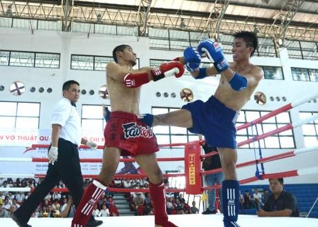 Cloture du Festival international des arts martiaux de Ho Chi Minh-Ville 2016 hinh anh 5