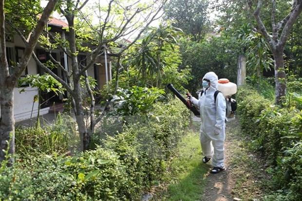 Intensification de l'examen du travail de prevention et de lutte contre le virus Zika hinh anh 1
