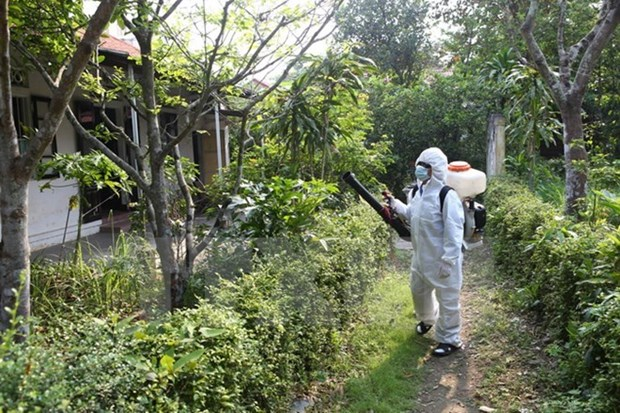 Aucun nouveau cas de virus Zika au Vietnam hinh anh 1