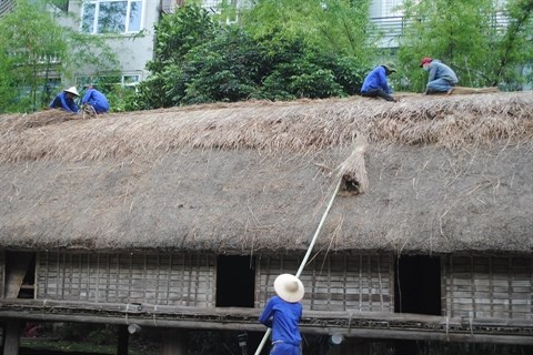 Renovation des nha rong et nha dai du Musee d'ethnographie du Vietnam hinh anh 3