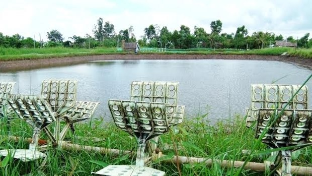 Ca Mau aide les habitants a retablir leur production hinh anh 1