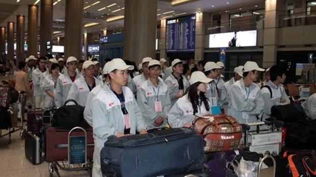 Plus de 33.600 travailleurs envoyes a l'etranger en 4 mois hinh anh 1