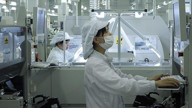 VEPR: Le Vietnam sera l'un des grands producteurs de la planete hinh anh 1