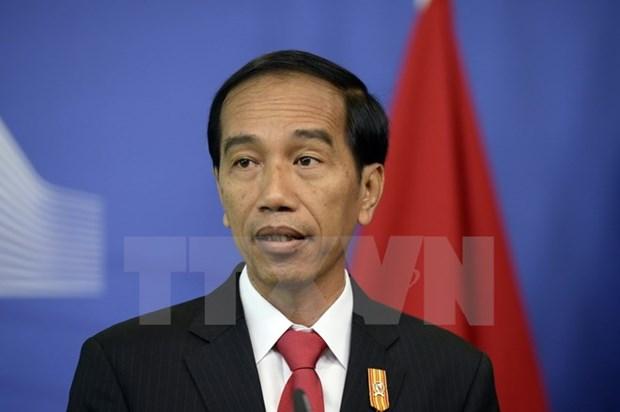 Republique de Coree et Indonesie renforcent leurs liens hinh anh 1