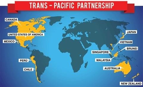 Le Vietnam accelere la ratification du TPP hinh anh 1