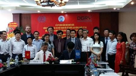 Memorandum entre l'Alliance des cooperatives du Vietnam, l'OIT et Raiffeisen hinh anh 1
