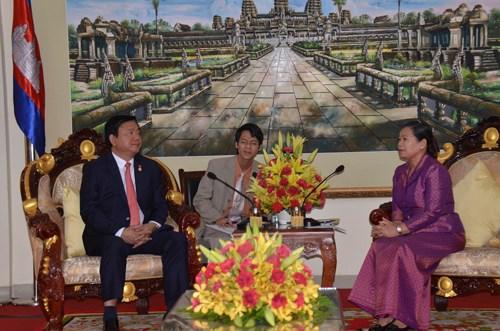 Ho Chi Minh-Ville fait tout son possible pour renforcer ses relations avec le Cambodge hinh anh 2