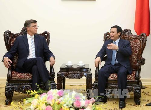 Le vice-Premier ministre Vuong Dinh Hue recoit des hotes australiens hinh anh 1