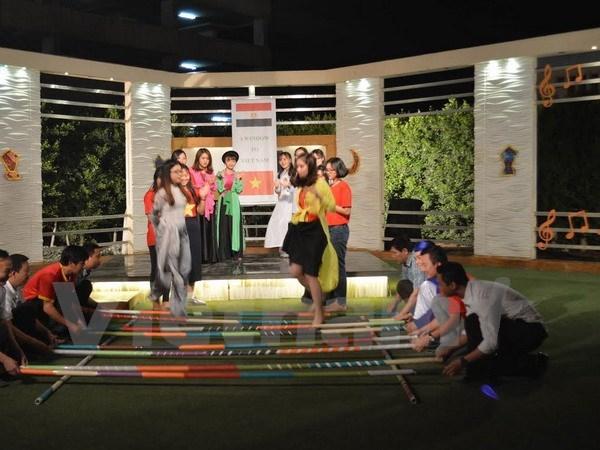 Egypte : emission televisee speciale sur le Vietnam hinh anh 2