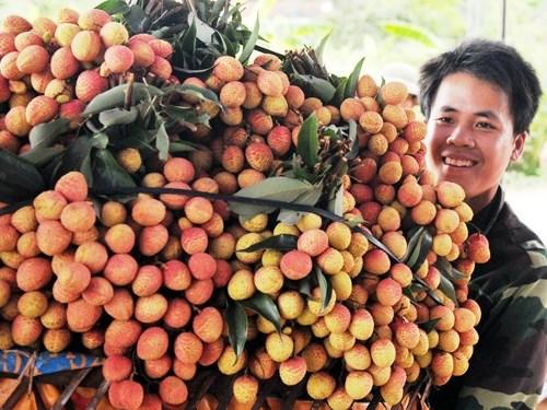 De plus en plus de produits vietnamiens dans les supermarches europeens hinh anh 2