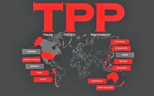 72% des entreprises vietnamiennes soutiennent le TPP hinh anh 1