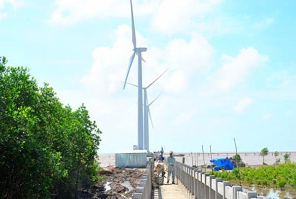 Cooperation pour le developpement de l'electricite eolienne au Vietnam hinh anh 1