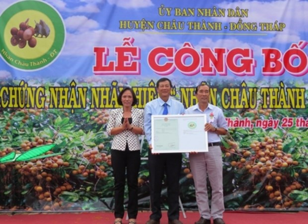 Longane Chau Thanh - Dong Thap : une nouvelle appellation d'origine hinh anh 1