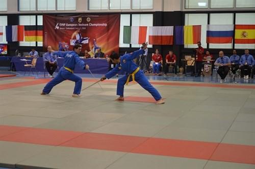 Les championnats d'Europe de Vovinam Viet Vo Dao en Suisse hinh anh 1
