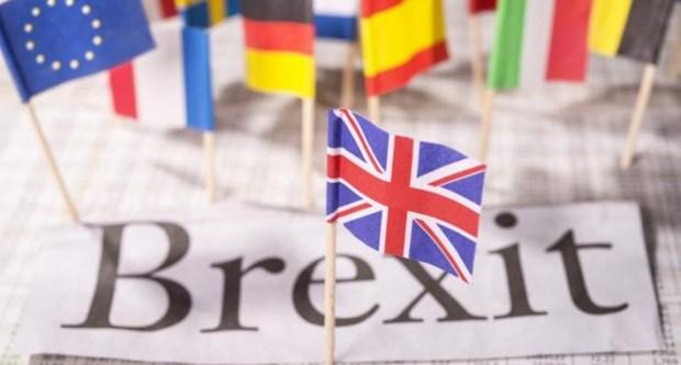 ANZ : le Vietnam sera le moins affecte par le Brexit hinh anh 1