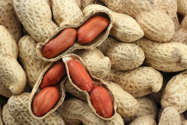 Le Vietnam suspend les importations d'arachide du Senegal hinh anh 1