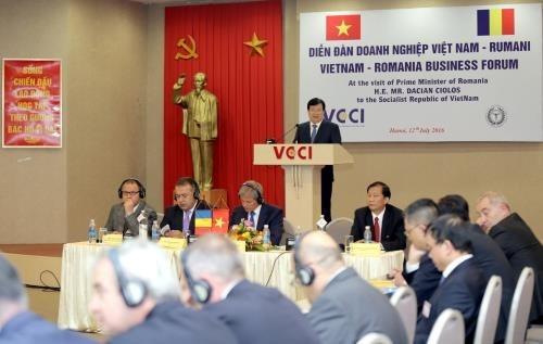Vietnam et Roumanie renforcent leurs liens economiques hinh anh 1