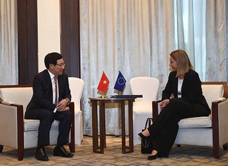 Le vice-PM Pham Binh Minh rencontre une haute representante de l'UE hinh anh 1