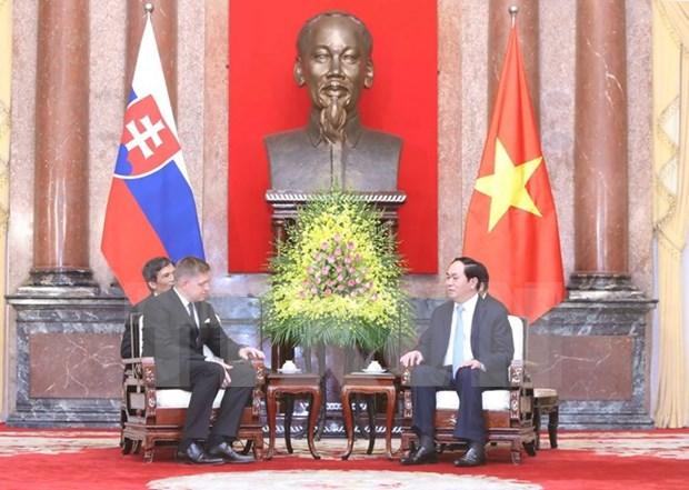 Le Vietnam souhaite promouvoir ses relations avec la Slovaquie hinh anh 2