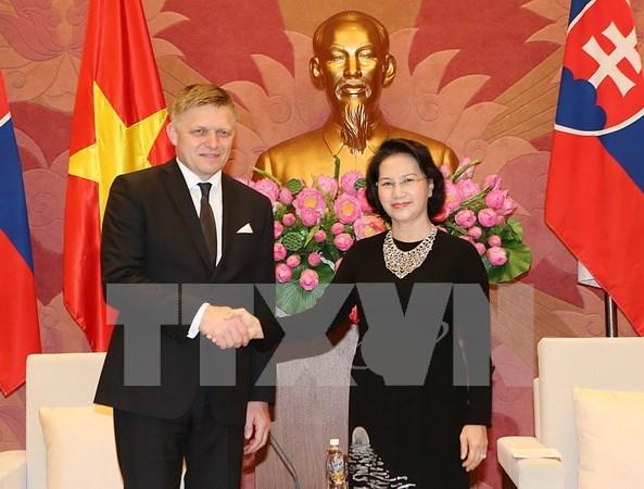 Le Vietnam souhaite promouvoir ses relations avec la Slovaquie hinh anh 3