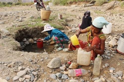 Changement climatique : aides internationales en faveur des femmes hinh anh 1