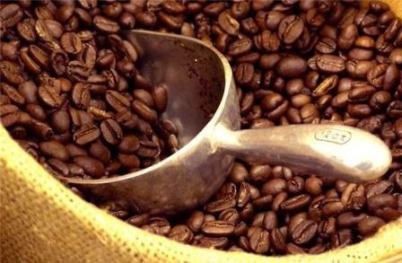 Les Algeriens apprecient le cafe vietnamien hinh anh 1