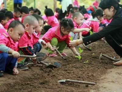 Plan pour l'education maternelle 2016-2017 hinh anh 1