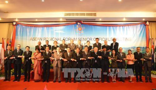 ARF 23 : declaration sur la cooperation entre les forces d'application du droit maritime hinh anh 1