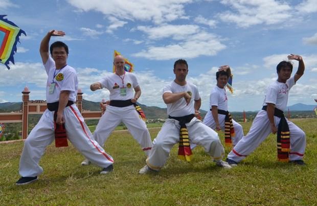 Le 6e festival international des arts martiaux traditionnels du Vietnam attendu en aout hinh anh 1