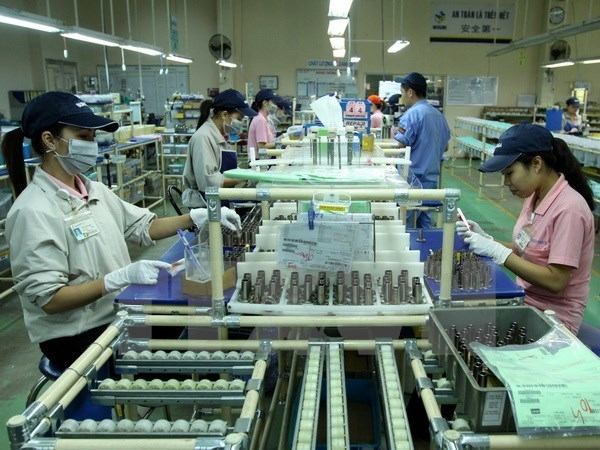 Binh Duong attire au total 25 milliards de dollars d'IDE hinh anh 1