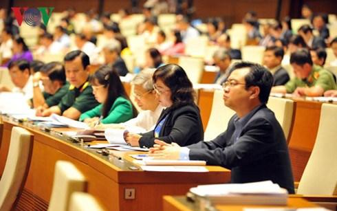 Des electeurs apprecient hautement la premiere session de la 14e legislature de l'AN hinh anh 1