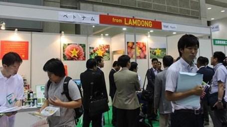 Lam Dong renforce sa cooperation agricole avec le Japon hinh anh 1