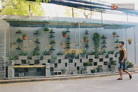 Transformer les terrains vagues en jardin hinh anh 1