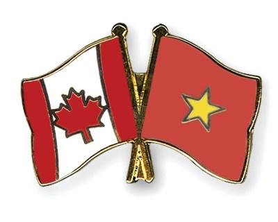 Le president du Comite populaire de Ho Chi Minh-Ville recoit le consul general du Canada hinh anh 1