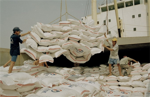 Exportation de 2,93 millions de tonnes de riz en sept mois hinh anh 1
